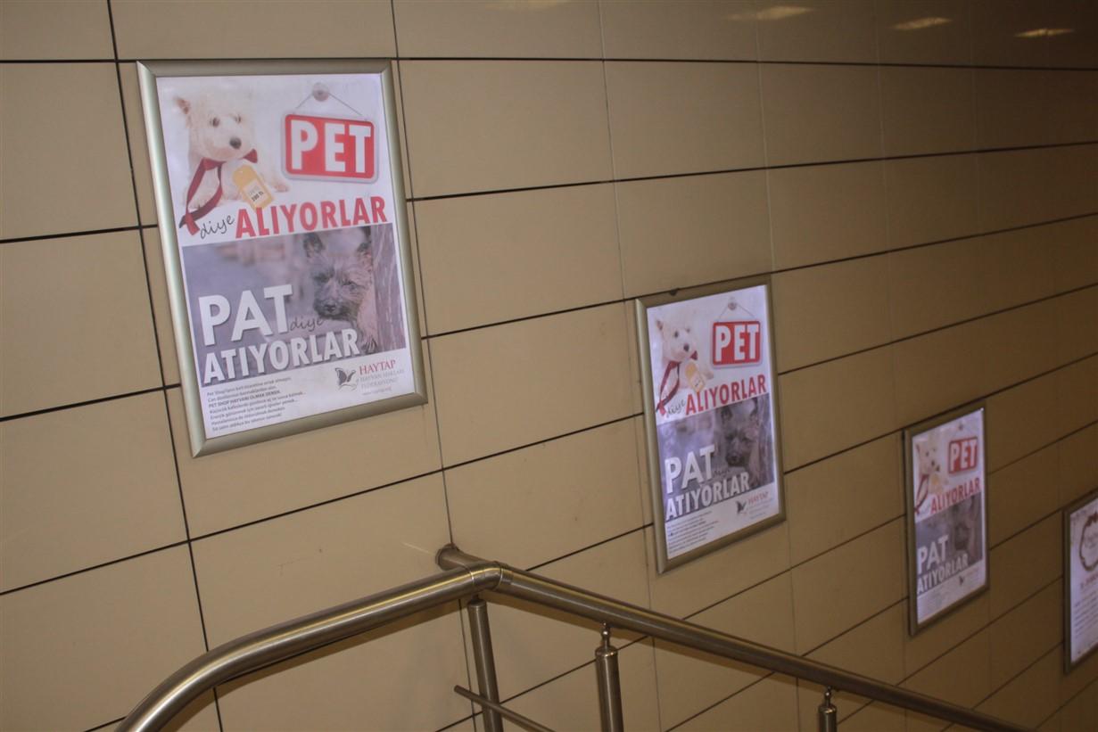 Haytap Petshop Gerçeği Afişleri Metrolarda - Aralık 2019