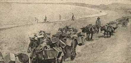 Çanakkale Savaşlarından Bir Fotoğrafın Anlamı !