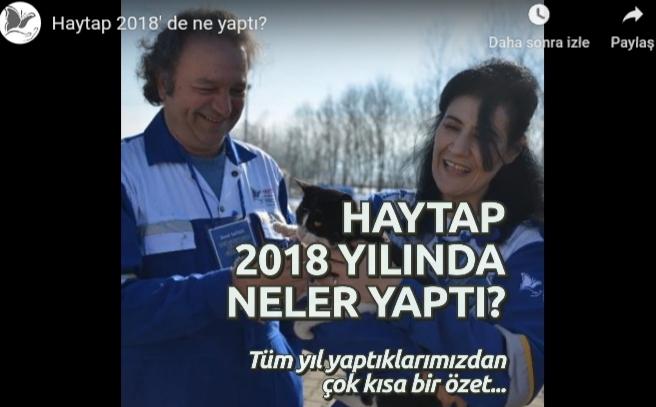 Haytap 2018 Yılında Neler Yaptı?
