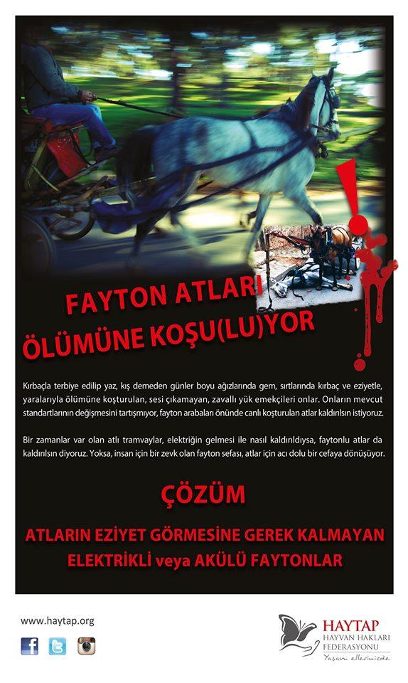 Fatyon atları İzmir, Antalya, Kuşadası ve İstanbul'da Kaldırılıyor