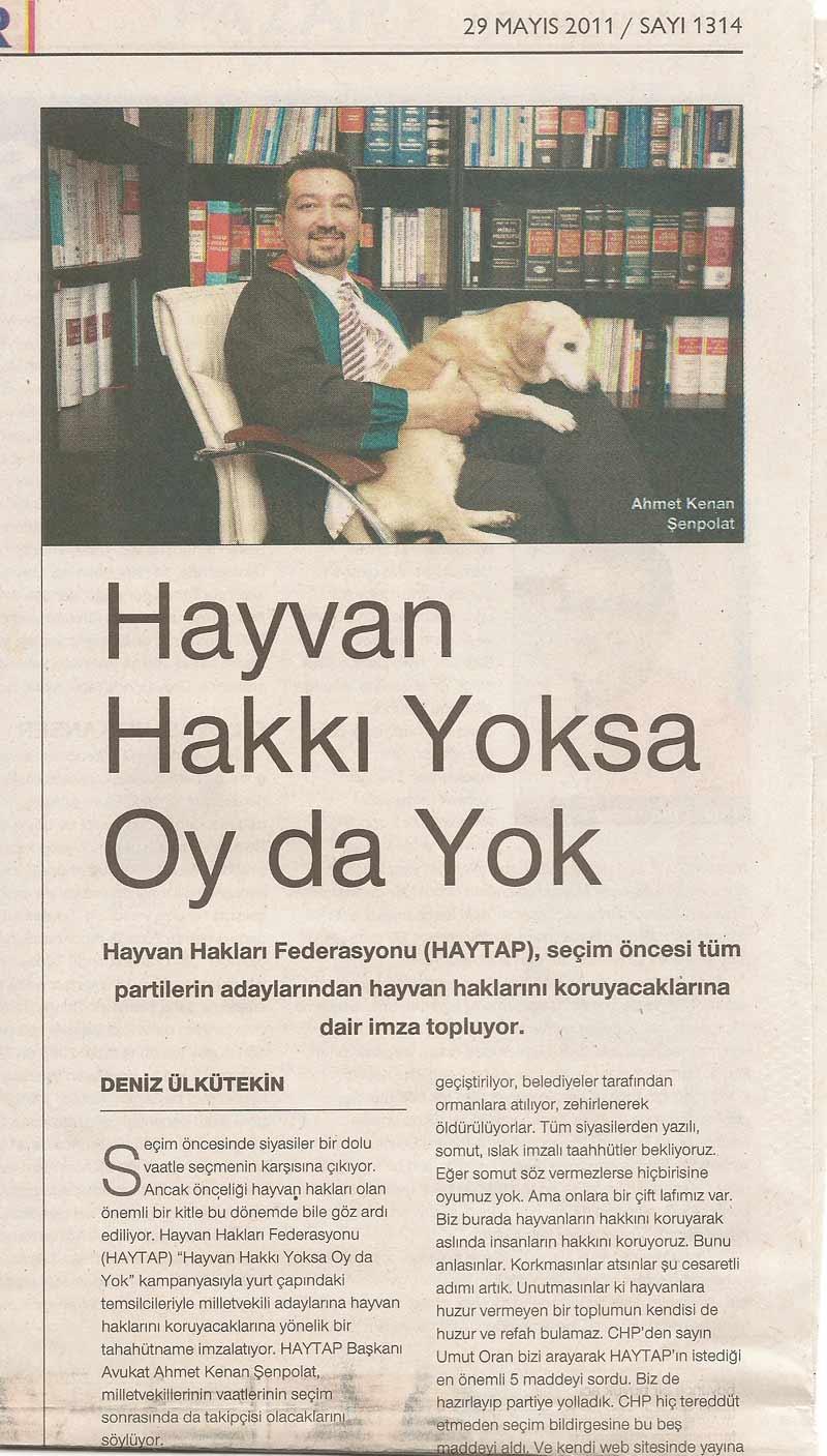 HAYTAP; ''Hayvan Hakkı Yoksa OY da Yok'' - Cumhuriyet