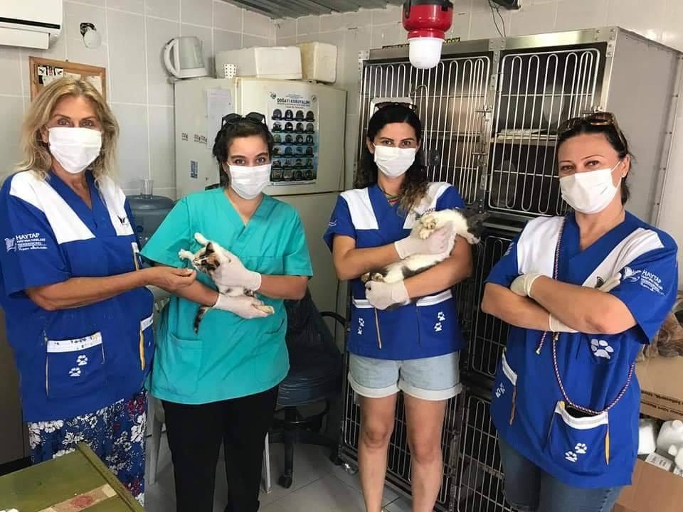 Haytap, Karaburun Bakımevine Ameliyathane ve Kedi Bakım Kafesi Aldı-2020