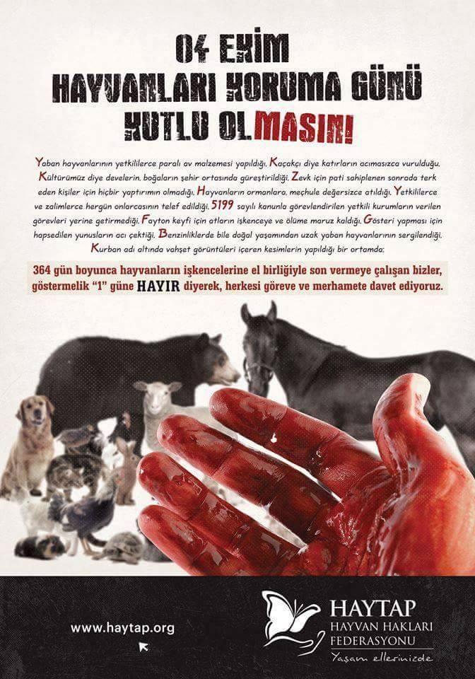 4 Ekim Hayvanları Koruma Günü Kutlu Olmasın!