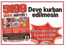 Hayvanları Koruma Kanunu Kabahat Değil Suç -   Hürriyet Gazetesi-2008