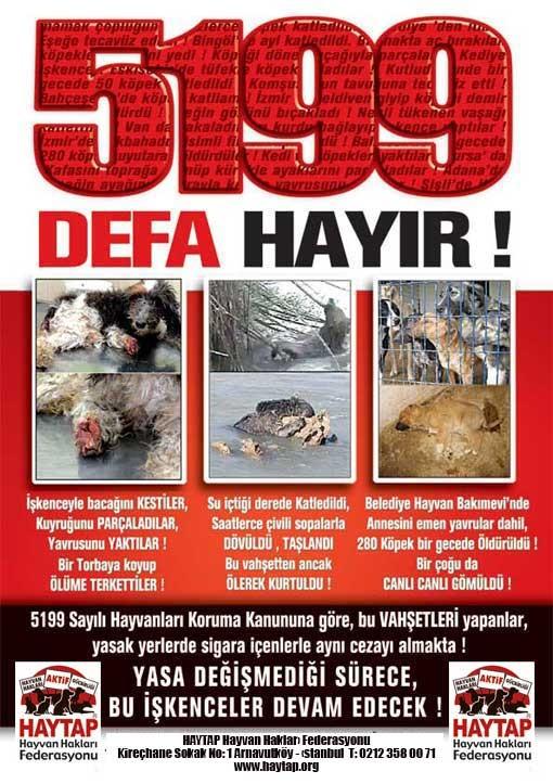 Kabahat değil Suç !  / Hürriyet