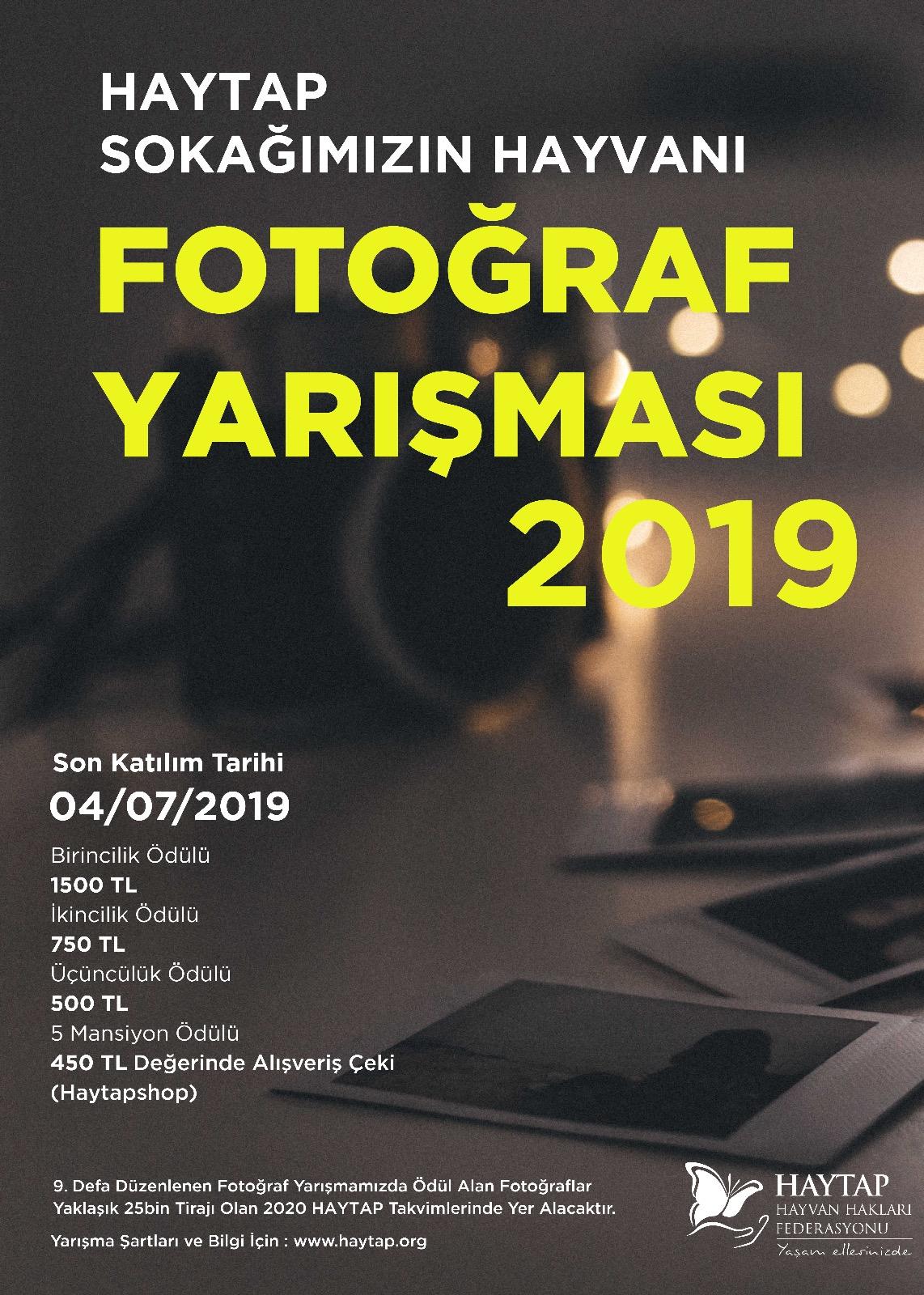 Haytap 2019 Sokak Hayvanları Fotoğraf Yarışması