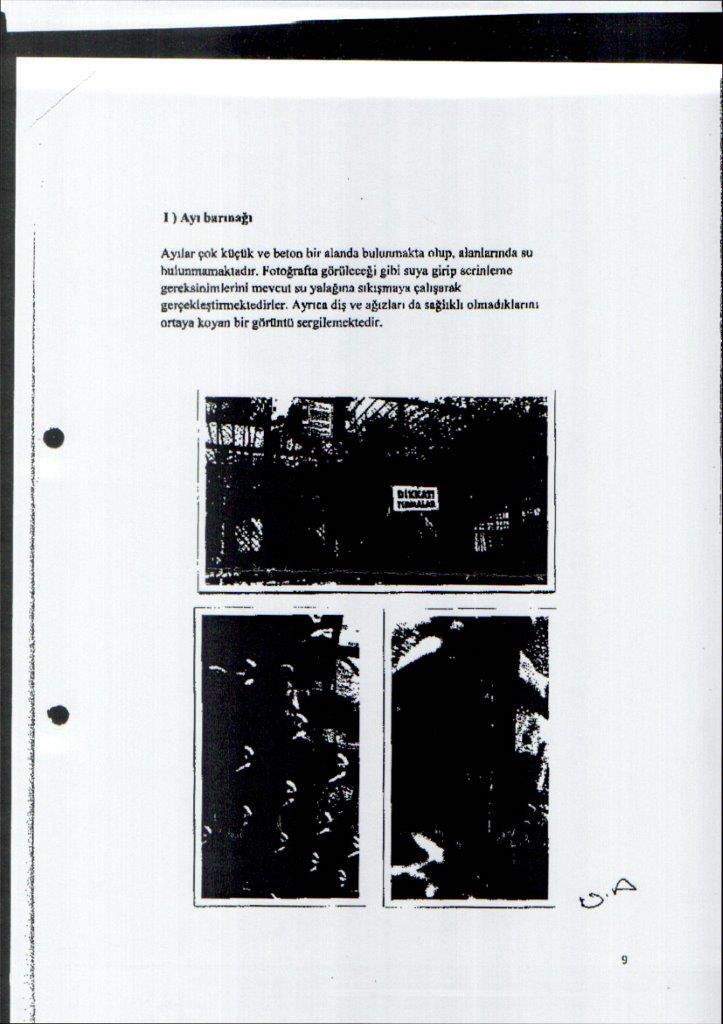 Hayvanat Hapishanesi için Bkişi Raporu - Maraş S.Hukuk Hakimliği