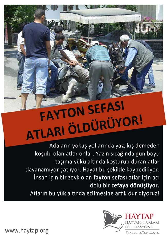 Adalardaki Faytonlar Kademeli Olarak Kalkmalı  ! -2012