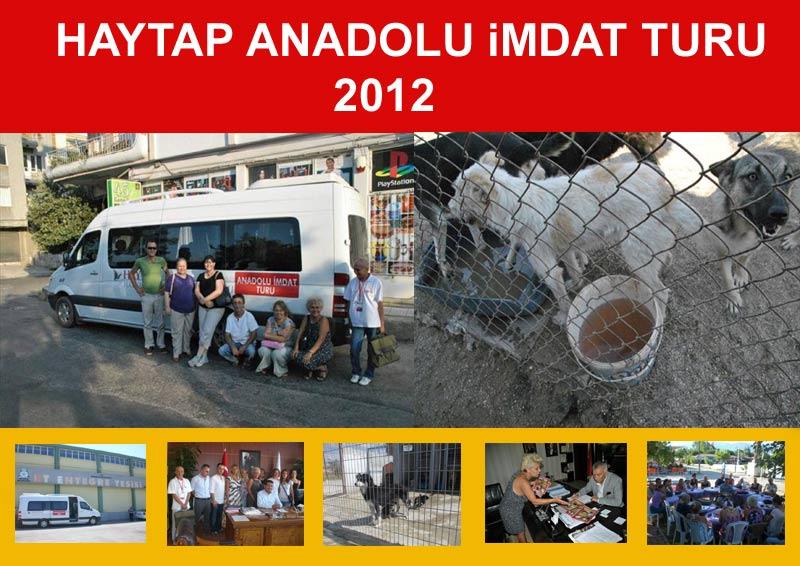 HAYTAP, 2012' de Neler Yaptı?