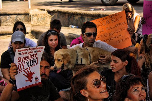 Haytap'ın 4 Ekim 2010 Türkiye Çapında ''Katilim Kim''Protestolarından Görüntüler