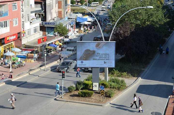 Ankara Kazan Belediyesi Tüm Belediyelere Örnek Olsun! - Kazan'da Her Yer Haytap Afişleri İle Donatıldı.