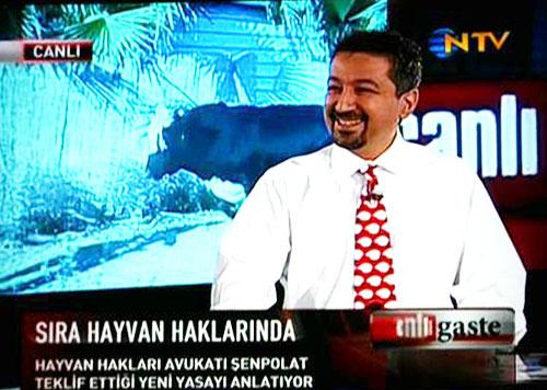 Haytap NTV 'de