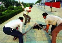 HAYTAP - 2007 yılı Çin 'i  Boykot Eylemlerimiz