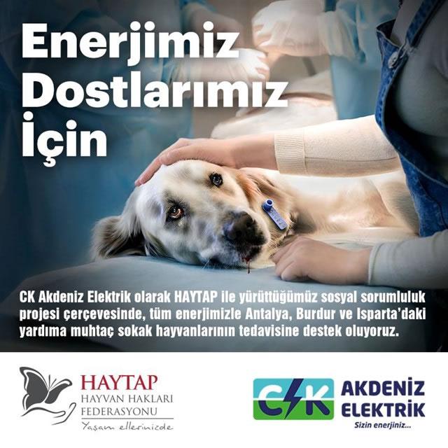 Haytap & Ck Akdeniz Elektrik İşbirliği Sayesinde Kurtarılan Can-3