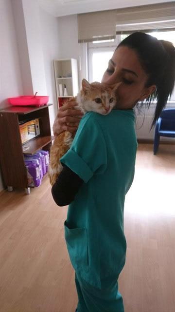 HAYTAP Çorum'daki Kediyi Kurtardı