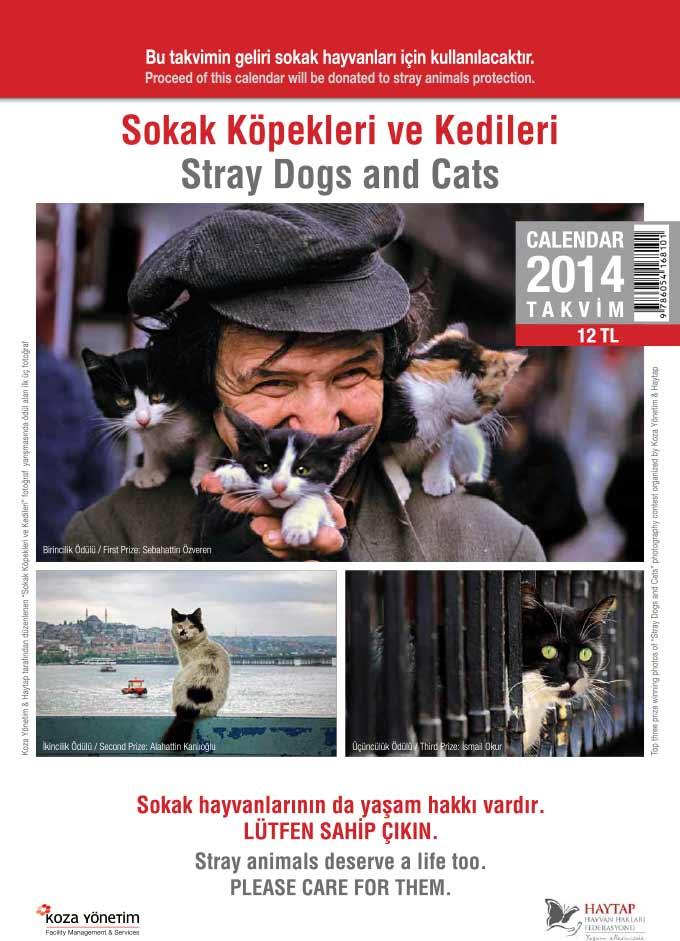 Haytap 2013 Yılında Neler Yaptı?