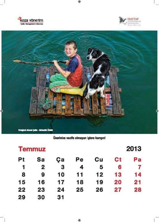 Haytap 2013 Duvar Takvimi- Pedigree Ön Kapak Sponsorluğunda
