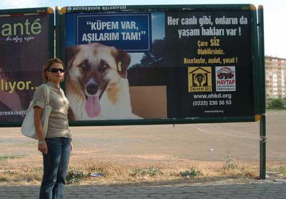 HAYTAP Billboardları Eskişehir Caddelerinde !