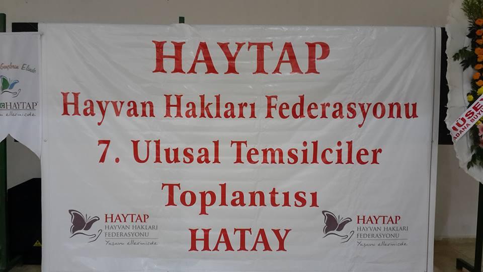 HAYTAP 7. Ulusal Temlsilciler Toplantısı Hatay'da- 2014