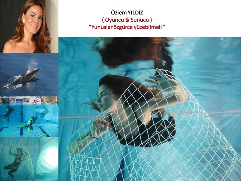 Ünlüler Haytap'ın Projesinde '' Havuzlardan Okyanuslara Yunuslara Özgürlük''  - Fox Haber