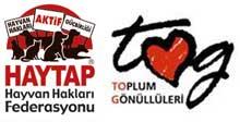 HAYTAP - Siirt 'de Bir İlkokula El Uzatıyor !