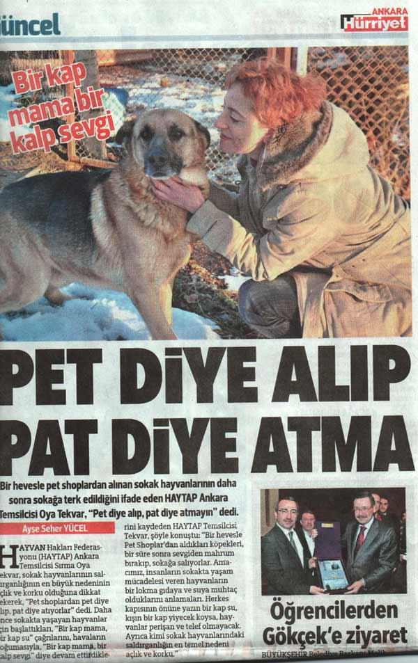 Pet Diye Alıp, Pat Diye Atma - Hürriyet
