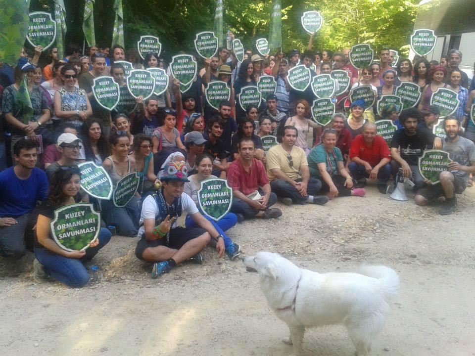 Ormana, Hayvanlara, Gezegene Özgürlük!
