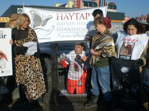 HAYTAP, Kürk'e Hayır Etkinliği