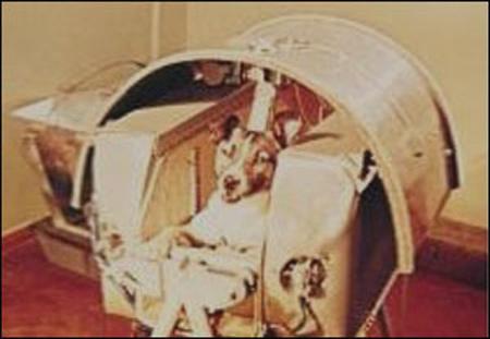 Uzaya Giden İlk Canlı ''Layka'' Anıldı