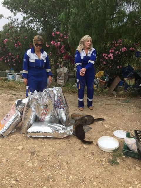 Haytap ve Petlebi İşbirliği ile Urla'daki Canlara Ulaşan Mama Bağışları