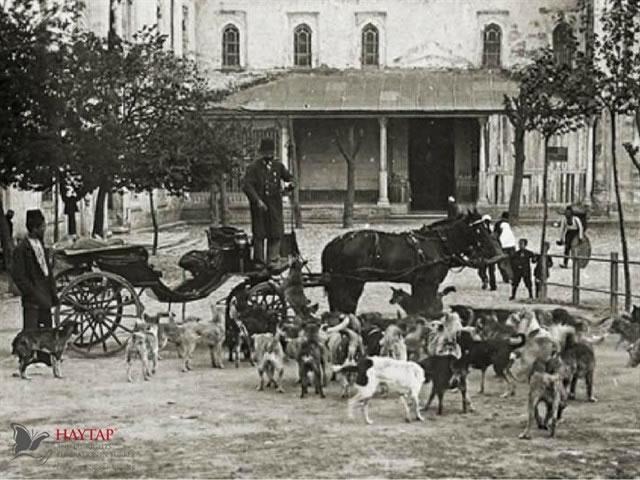 Osmanlı'da mancacı