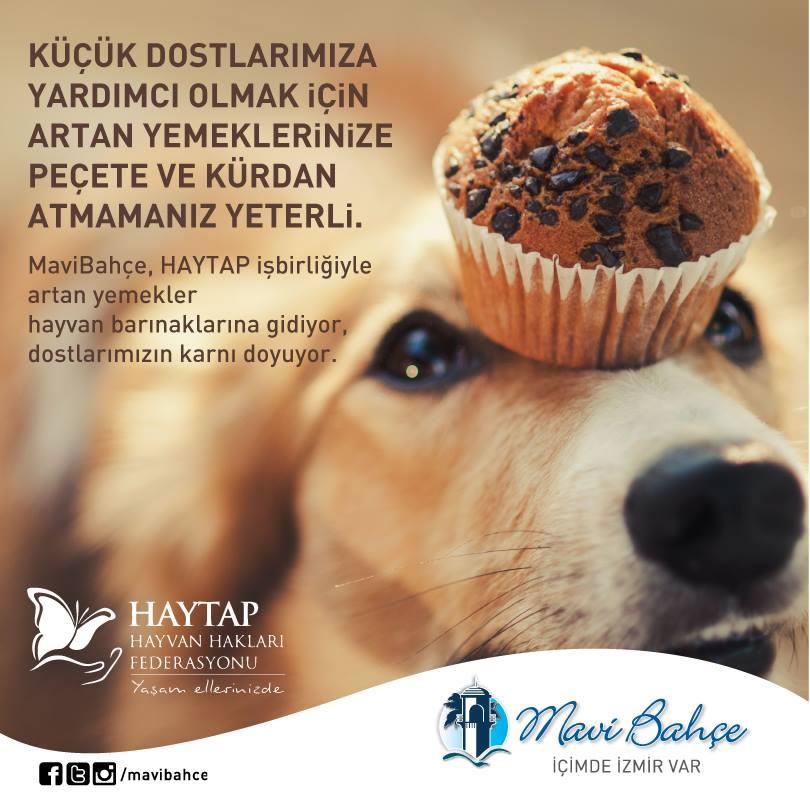 HAYTAP – Mavişehir Ortak Çalışması