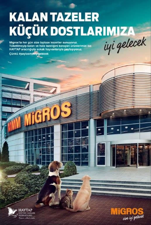 (*) Migros ve Haytap Elele ! - Haytap - Migros hand in hand..together for our stray friends