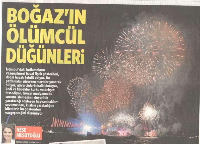 Havai Fişekler - Milliyet Gazetesi
