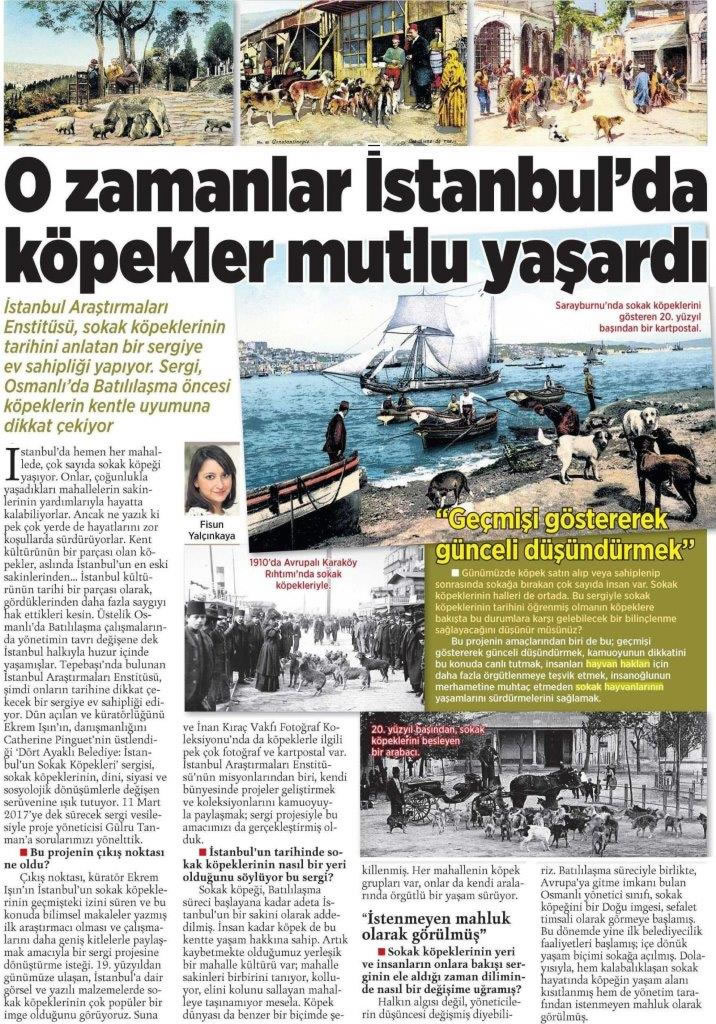 O Zamanlar İstanbul'da Köpekler Mutlu Yaşardı