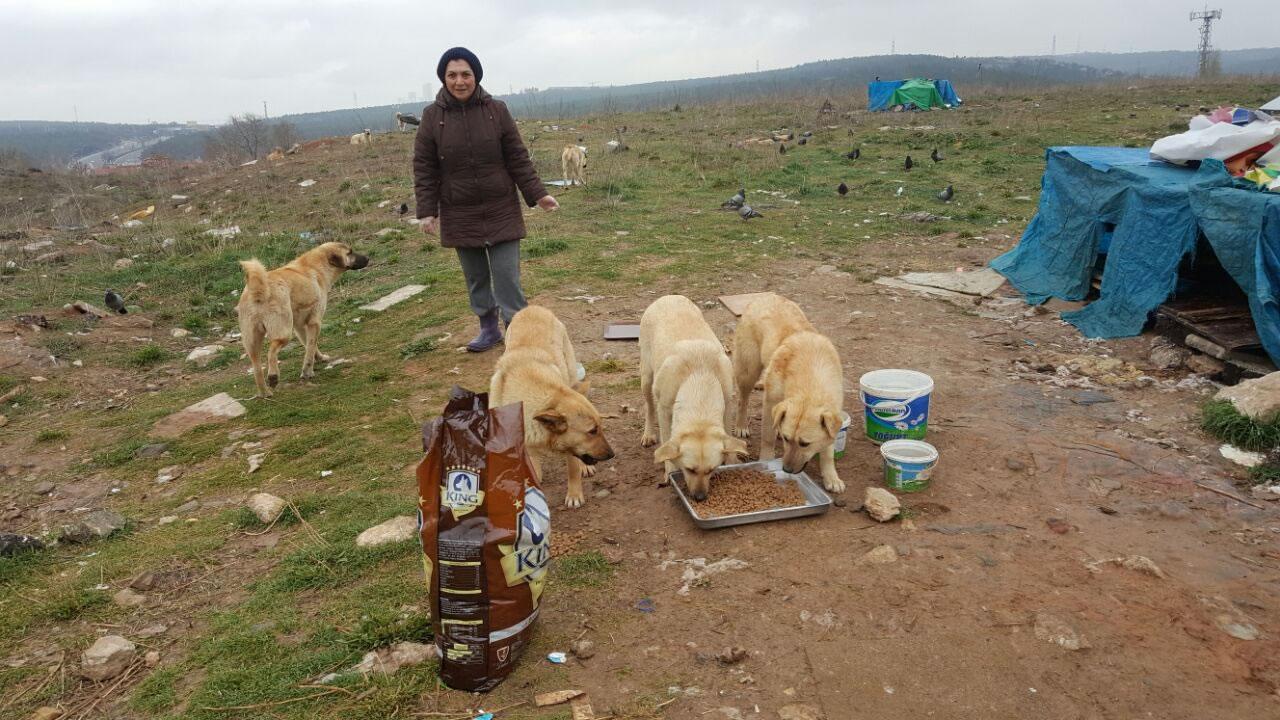 HAYTAP Ankara Saha Çalışmasında