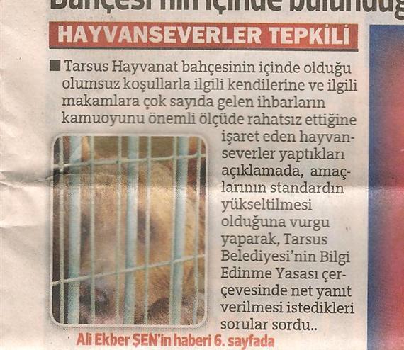 Tarsus Hayvanat Bahçesine Tepkimiz - DHA