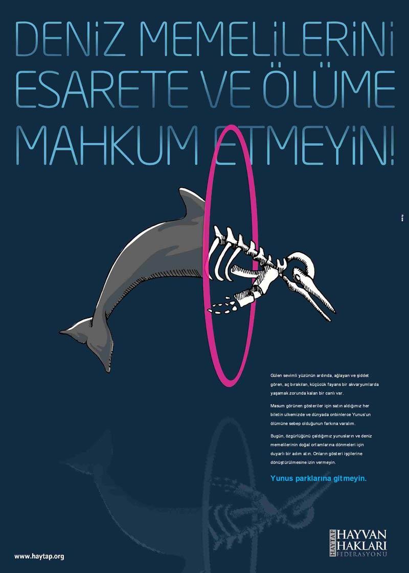 HAYTAP ve SUALTI Gazetesi Organizasyonu ''Özgür Yunuslar Özgür Dalgıçlar''Eylemi