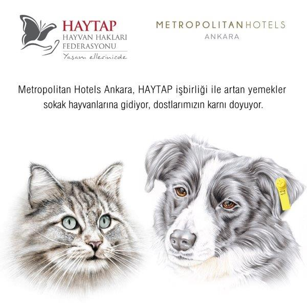 Metropolitan Hotels Ankara & Haytap işbirliği ile artan yemekler sokak hayvanlarına gidiyor!