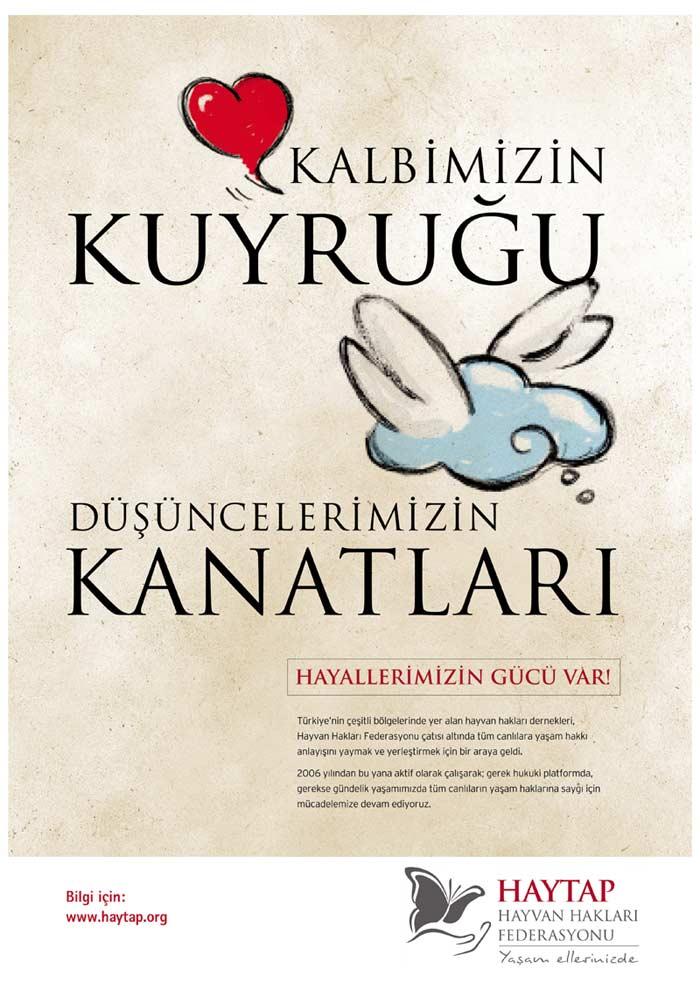 kalbimizin_kuyrugu_2011