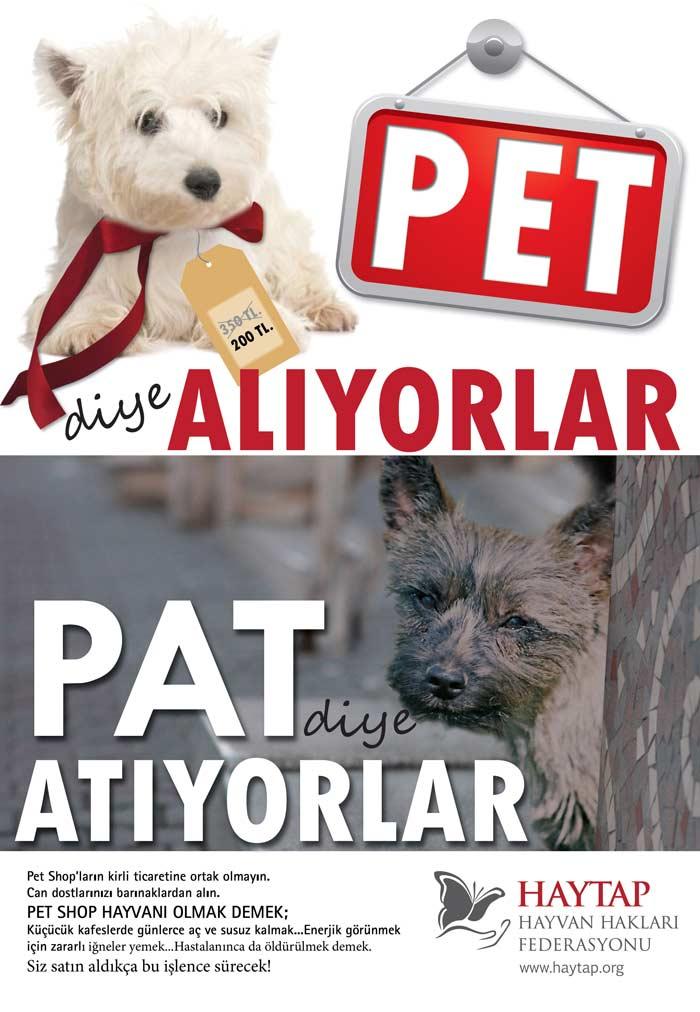 pet_diye_pat
